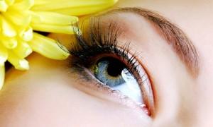 Extensions de sourcils à domicile - Carol'Esthétique
